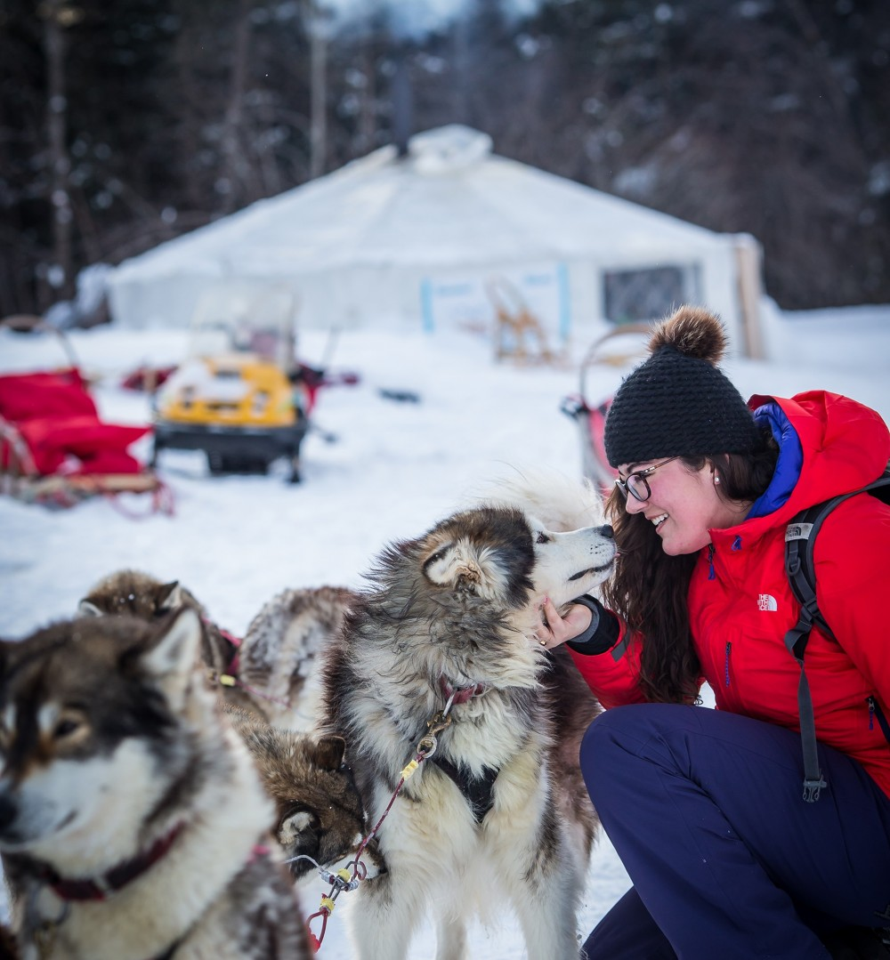 150225AVTSMT_dogsledding-5562